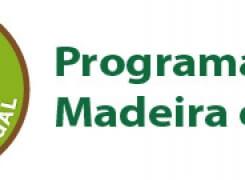 Usar Madeira destrói Florestas?